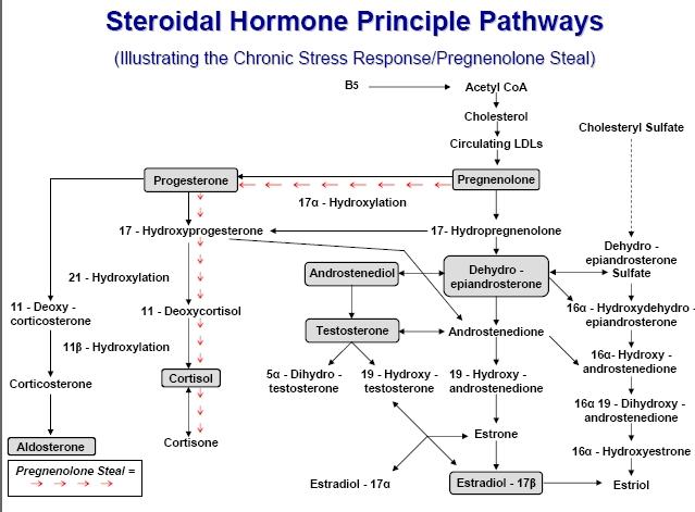 adrenal steroids side effects